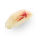 Sea bass nigiri